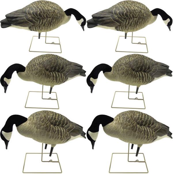 Canada Goose kensington parka replica store - Canadian Goose Field Decoys from Knutson's