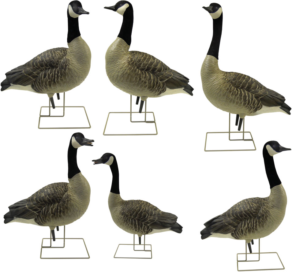 Canada Goose montebello parka online store - Canadian Goose Field Decoys from Knutson's