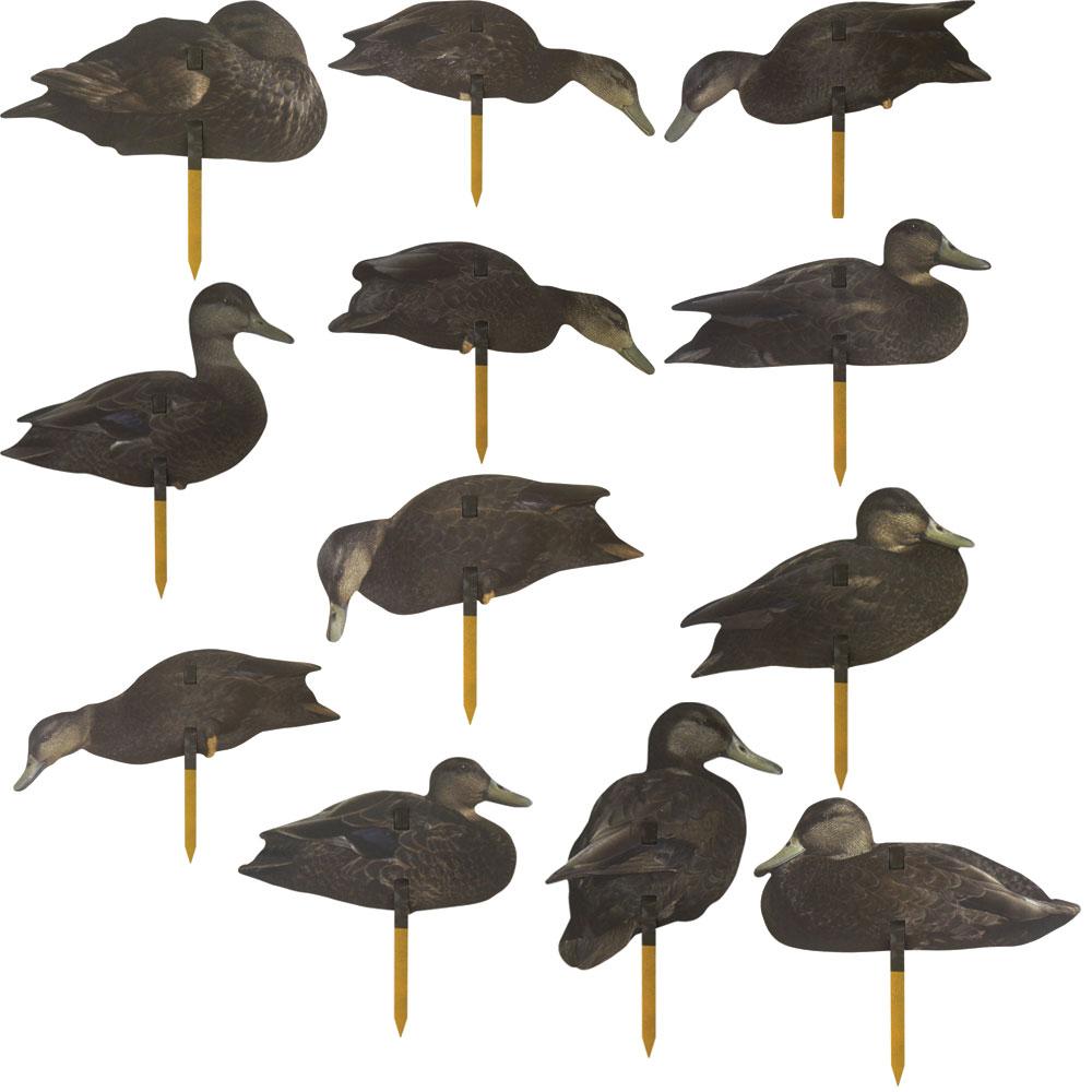 Black Duck Field Decoys